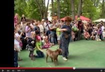 «53 секунды»: «Праздник Жизни» в Великом Новгороде