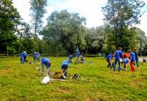 Компания Neste Oil подарила Великому Новгороду 80 деревьев