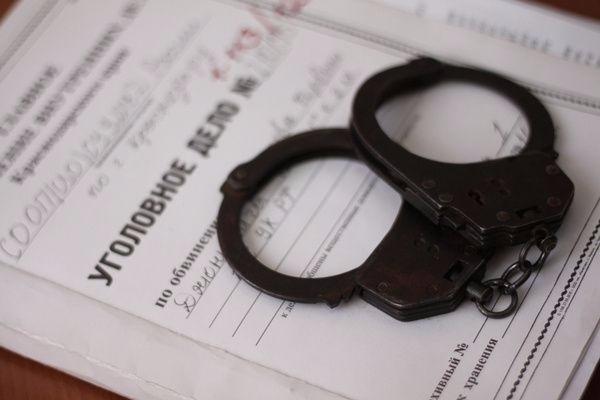 Полицейские уличили молодую боровичанку в краже восьми мобильных телефонов