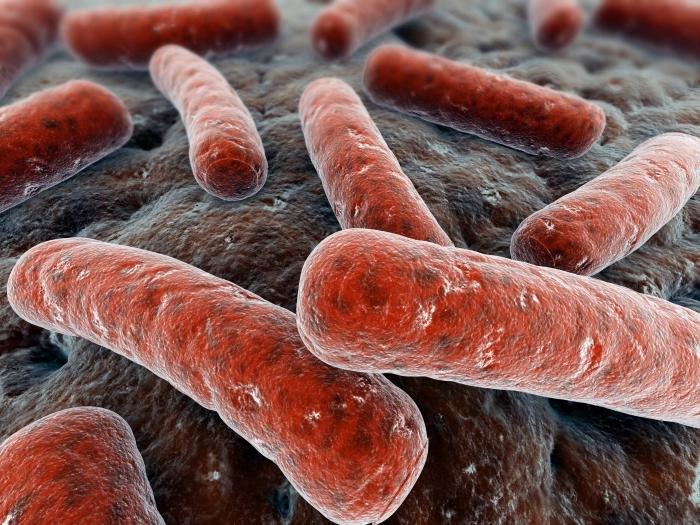 Новая новгородская научно-клиническая лаборатория поможет диагностировать туберкулез и ротавирусы на самом современном уровне