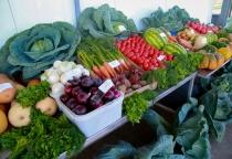 Новгородская область выходит на полное самообеспечение мясом и овощами