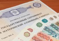 Более 24 тысяч новгородских семей получили материнский капитал