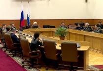 Рабочая группа при думе Великого Новгорода создаст концепцию обращения с домашними животными