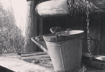Застолье в новгородской глубинке закончилось стрельбой и расчлененкой