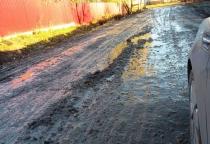 Фото: новгородцы жалуются на дорогу из грязи в Григорове