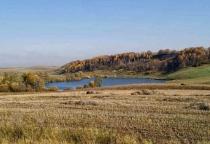 В Новгородской области не используется 290 тысяч гектаров земель сельхозназначения