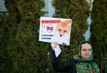 Фоторепортаж: антимеховой марш в Великом Новгороде
