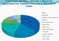 Ситуация на потребительском рынке Новгородской области при запрете на ввоз товаров из Турции