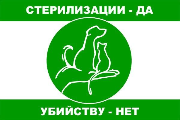 Бездомным животным Великого Новгорода больше не придется страдать