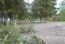 В Поддорском районе разыгралась буря на суше