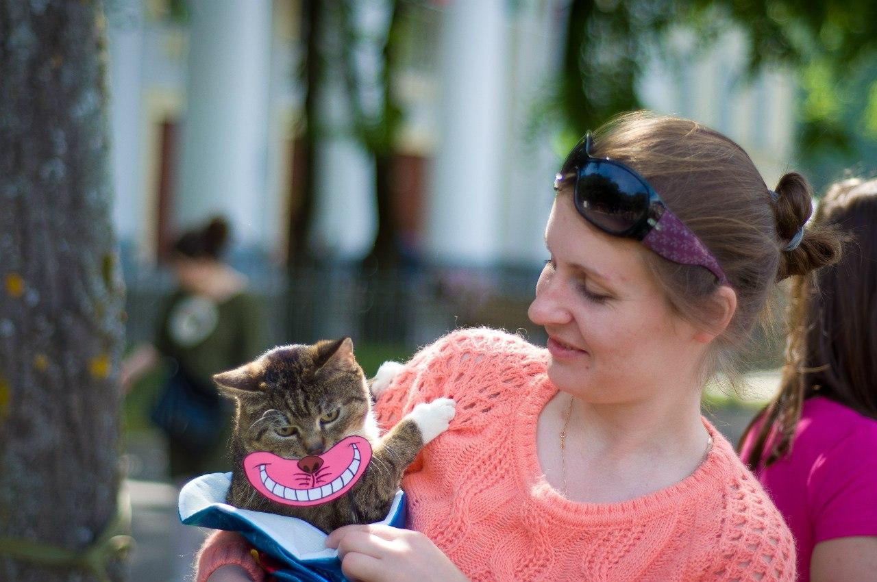 Завтра новгородские общественники и ветеринары обсудят открытие «Центра временного содержания животных без владельцев»