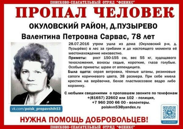 В Новгородской области пропал ещё один грибник