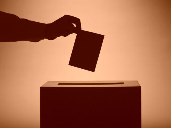 Список кандидатов Новгородского «Яблока» не прошел регистрацию для участия в выборах