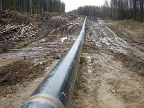 Четверо жителей из Санкт-Петербурга и Курской области воровали из нефтепровода в Пестовском районе дизельное топливо