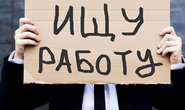 В Новгородской области 3396 человек — официально безработные
