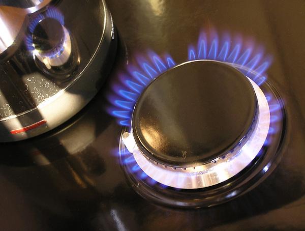 В Новгородской области проверят безопасность использования газа в быту