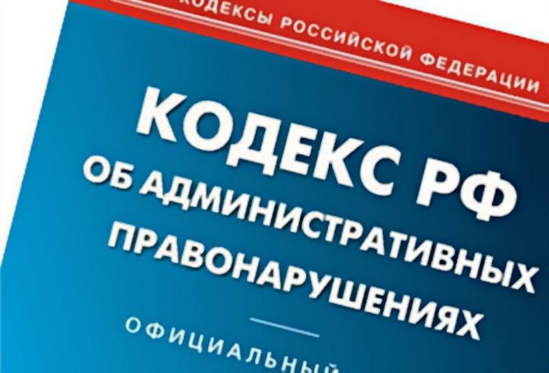 38 мелких хулиганов наказали в Новгородской области за трое суток