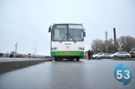 Новгородские автобусы №7 и 7А запаздывают из-за рухнувшего на дорогу дерева