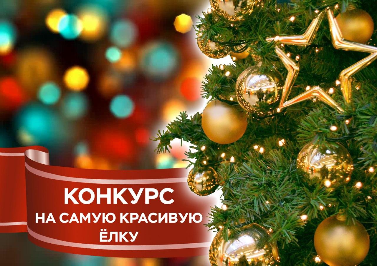 Конкурс: выбираем самую красивую новогоднюю ёлку