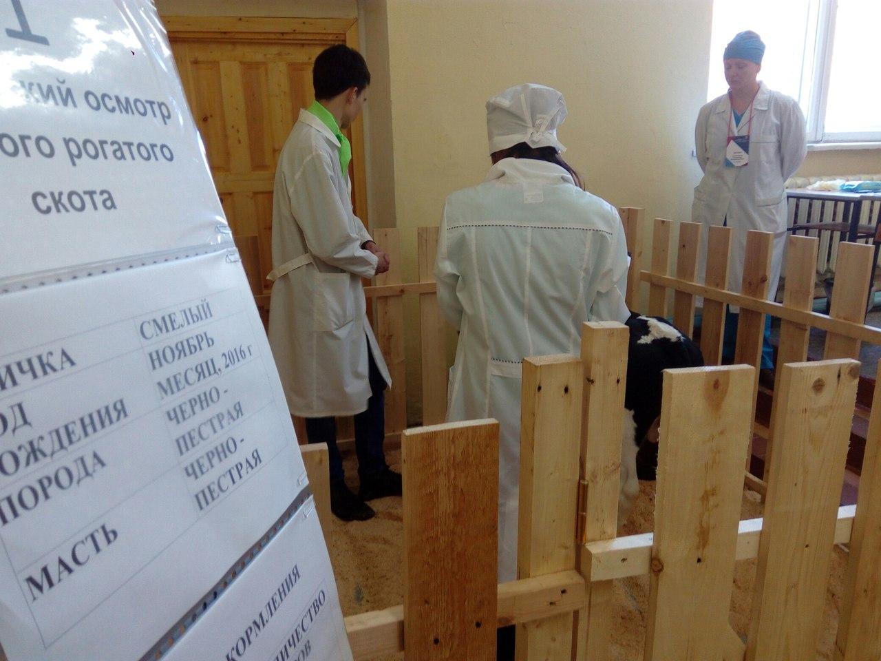 В сентябре в новгородских школах появятся агроклассы