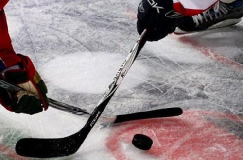 В Великом Новгороде Чехия обыграла Швецию в хоккей — 4:2