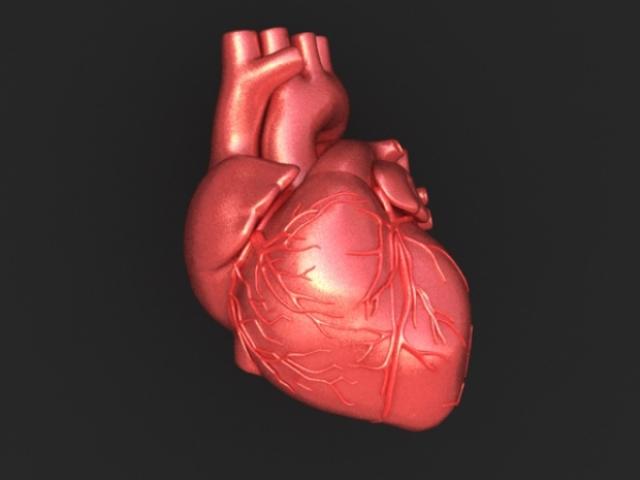 В Любытинском районе расследуют отказ скорой помощи помочь больному с инфарктом