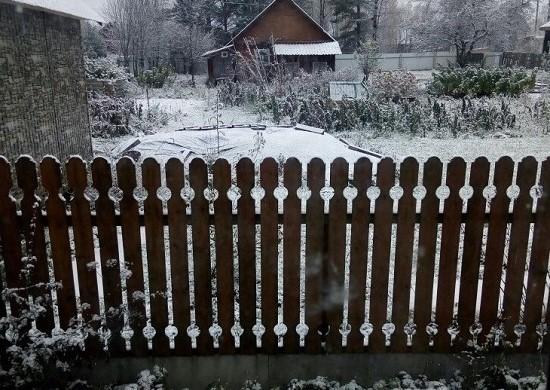 Первый снег-2017 глазами жителей Новгородской области: «53 новости» собрали фото