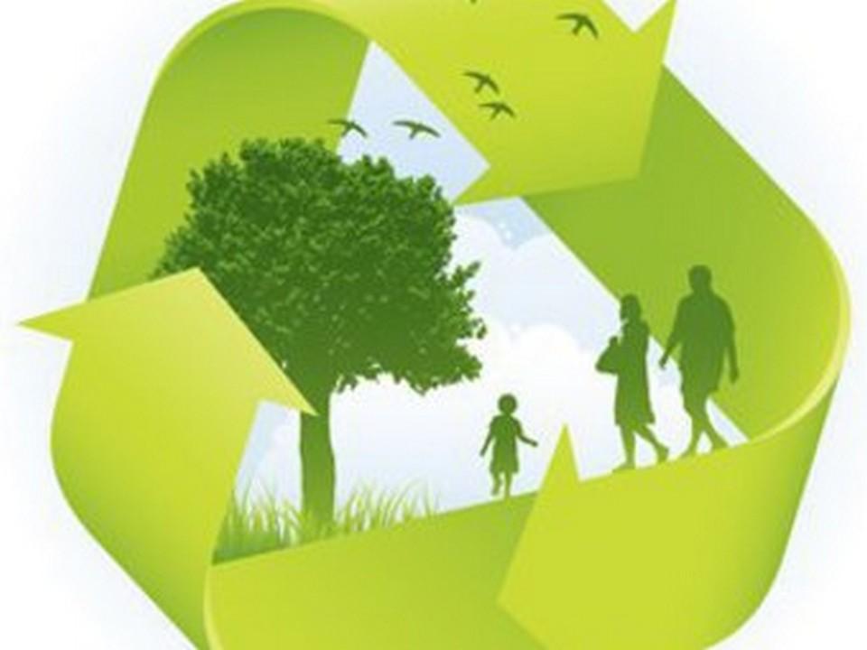 Новгородская область заняла 51 место в экологическом рейтинге