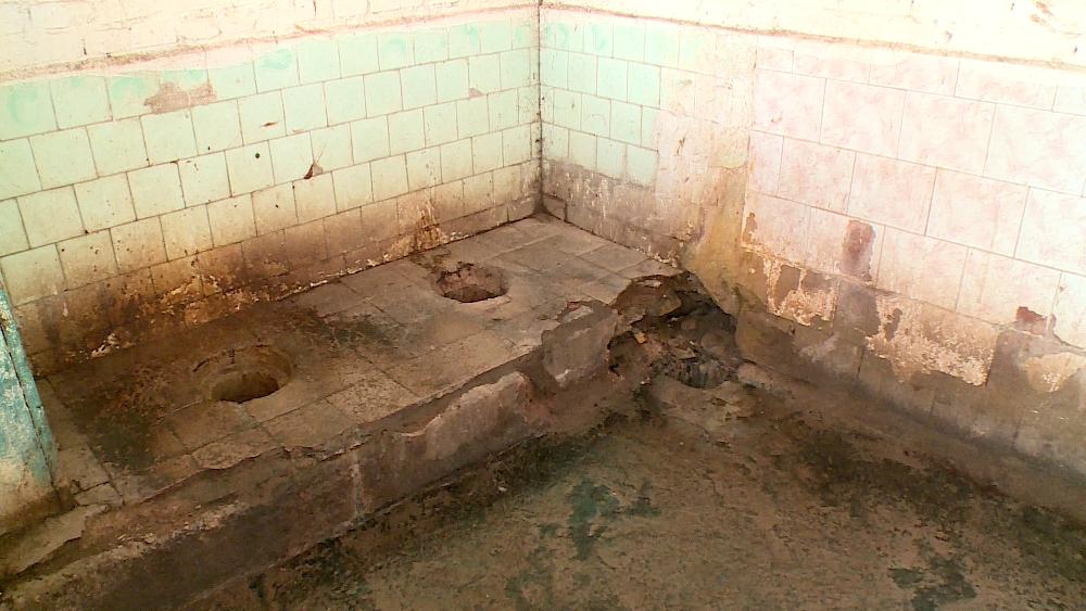 Нужное место: крестецкий туалет не ремонтировался 60 лет