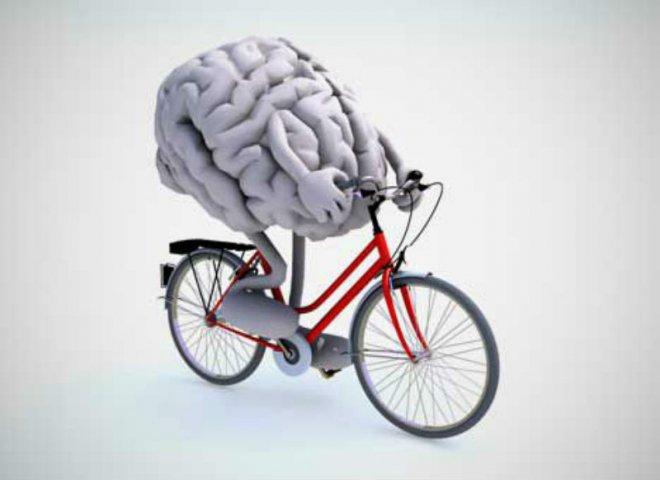 Крутить педали и извилины: спортивно-интеллектуальный квест от Новгородского музея-заповедника