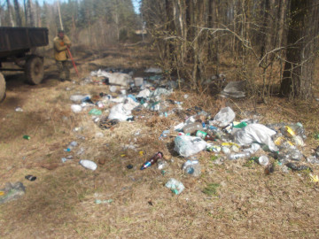 В ходе уборки в Молочковском бору найден документ с персональными данными сольчанина