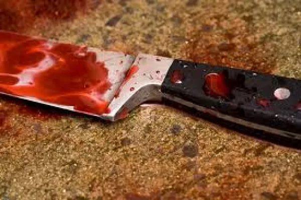 Нож в спину: петербуржец убил своего знакомого из Старорусского района