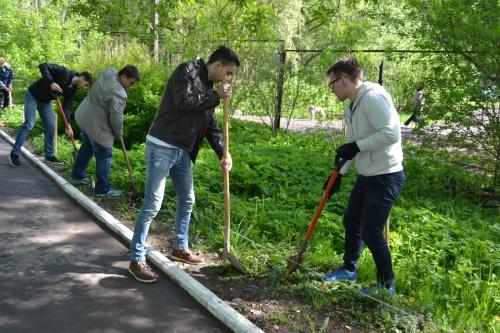 Туи выпускников: семь лет традиции новгородского института