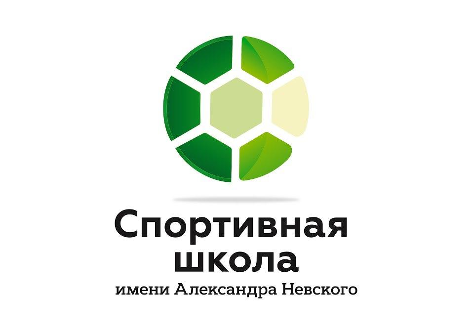 Отчет о результатах деятельности ГОАУ «Спортивная школа имени Александра Невского» за 2016 год