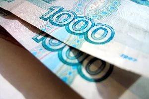 Законопроект о компенсации членам общественной палаты собственных расходов вызвал вопросы в облдуме