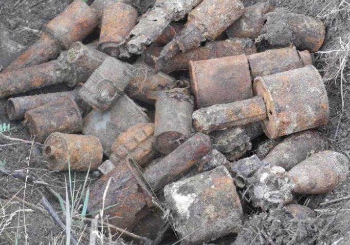Предприимчивый житель Старой Руссы хотел сделать из гранаты сувенир