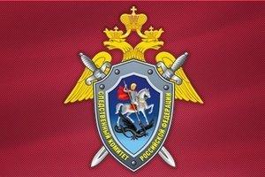 В Великом Новгороде следователи выясняют обстоятельства гибели мужчины, задержанного полицией