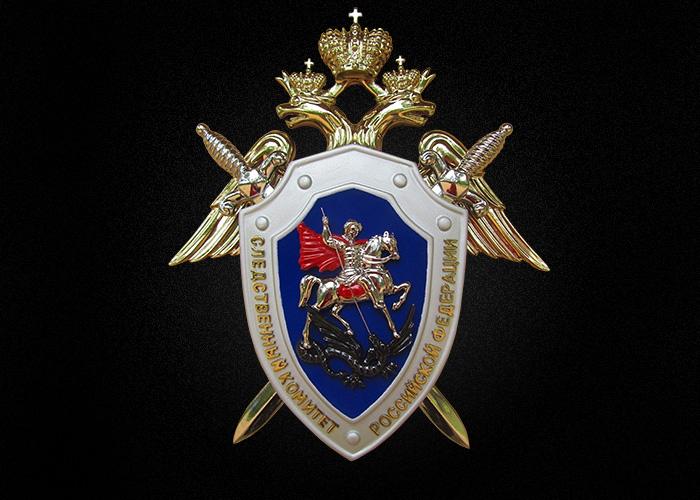 В Великом Новгороде следком и УМВД проверяют причастность полицейских к избиению новгородца