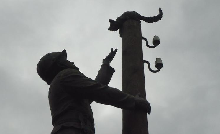 В Великом Новгороде вандалы напали на электромонтера-спасателя кошек