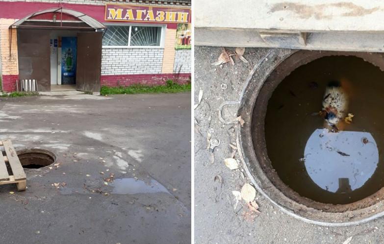 Новгородцы обсуждают в соцсети удручающий фотоколлаж с первой жертвой открытого люка