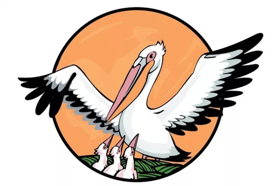 Учитель из Великого Новгорода получил заветного «пеликана» за свою работу