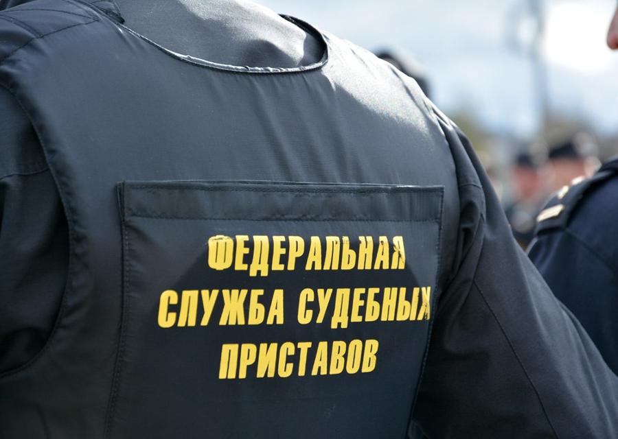 Петербуржец не вернул долг и лишился земли в Чудовском районе