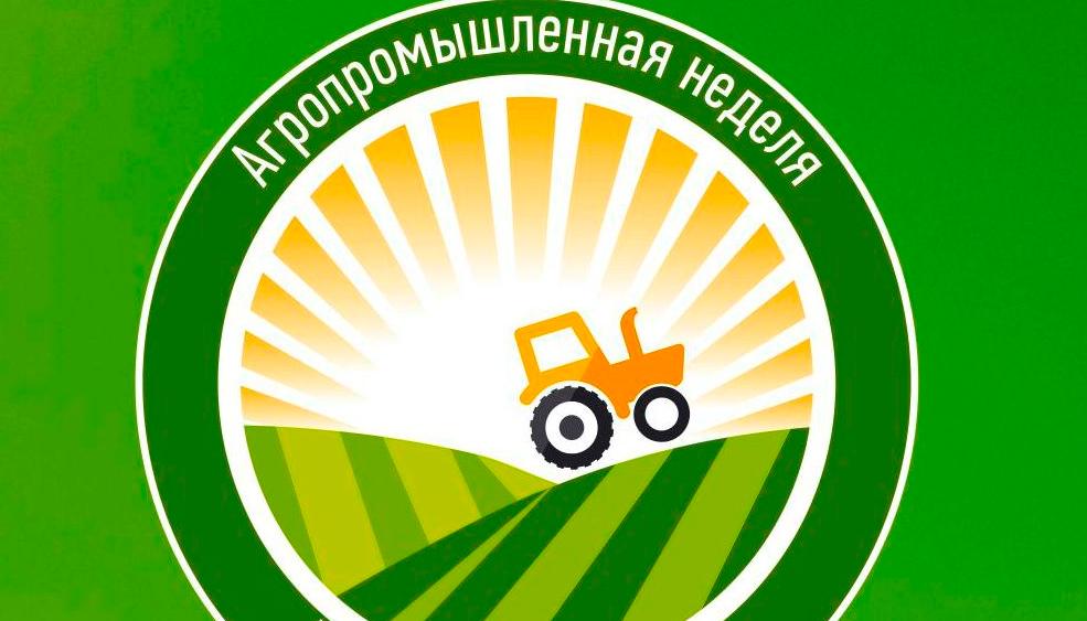 В Великом Новгороде поделятся секретами выращивания безвирусного картофеля