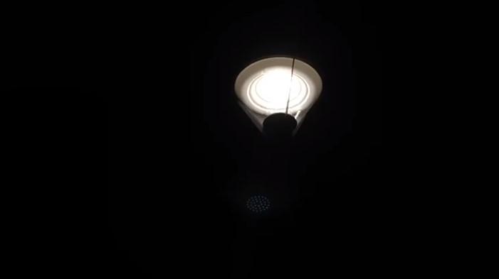 Видео: как заработали фонари в парке Юности Великого Новгорода