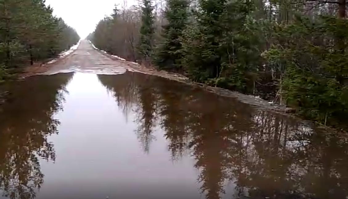 «Новгородавтодор» опубликовал детальный фотоотчет по разрушениям дорог