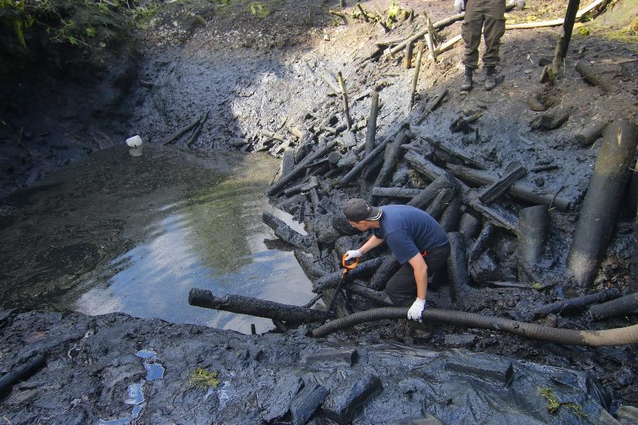 В Старой Руссе будут учить правильно проводить археологические раскопки