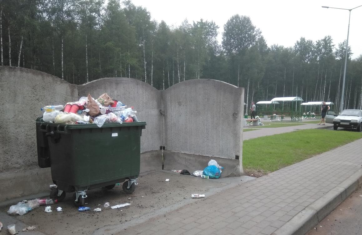 «Автодор» решит вопрос вывоза мусора с М-11 после публикации «53 новостей»