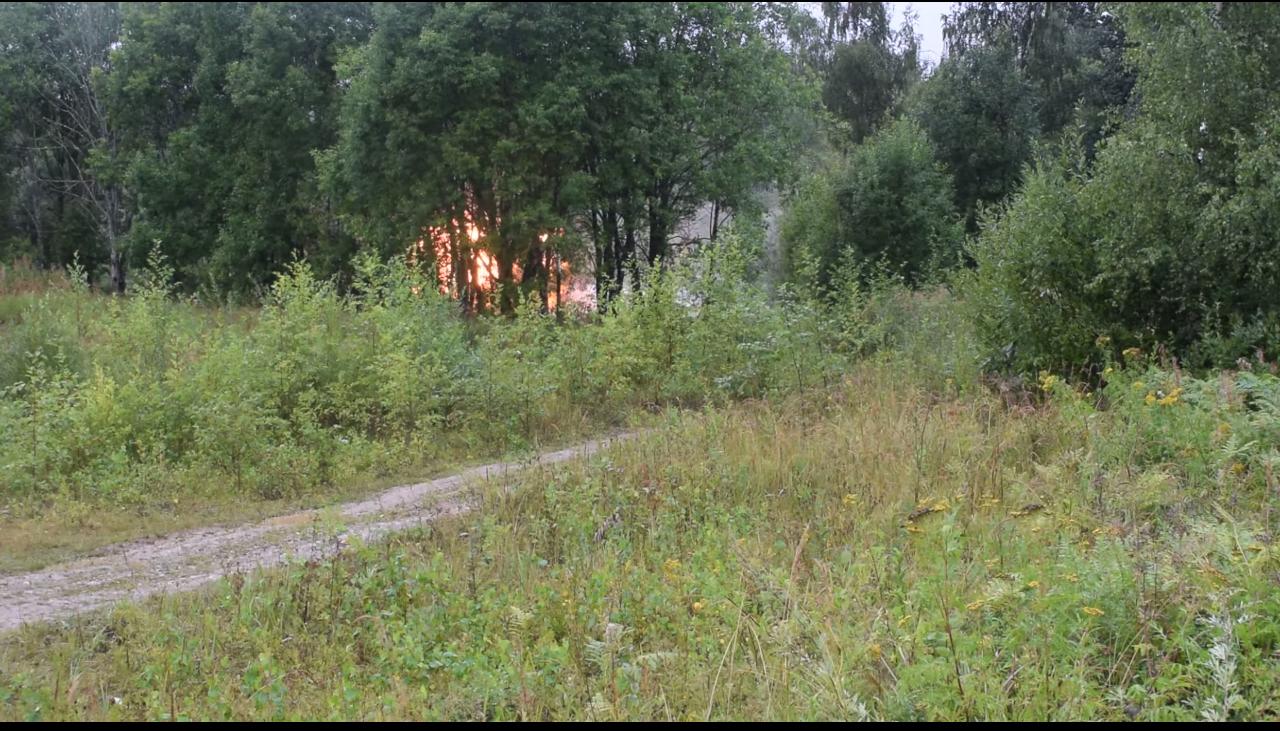 Видео: в Батецком районе уничтожили почти 300 снарядов