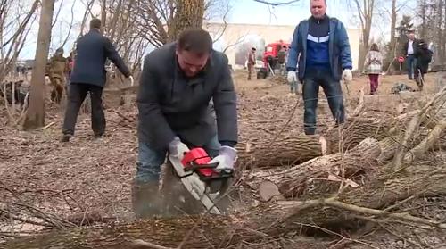 Видео: Андрей Никитин вышел на субботник наводить порядок с бензопилой