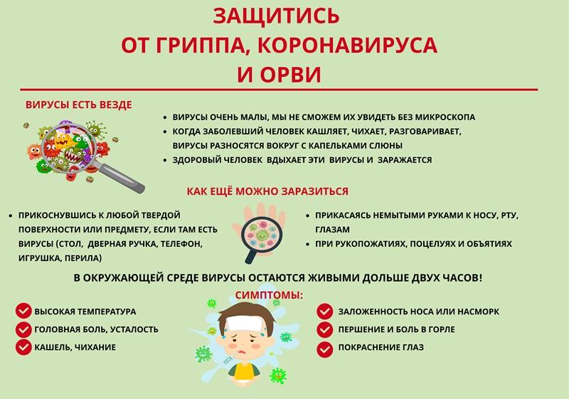 коронавирусы и другие вирусы